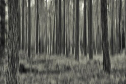 170913-050-Redigera